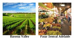 Kebun Anggur Kelas Dunia & Pasar Sentral Adelaide