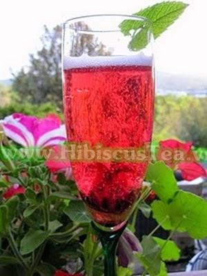 Các món ăn vặt dễ làm từ Hibiscus