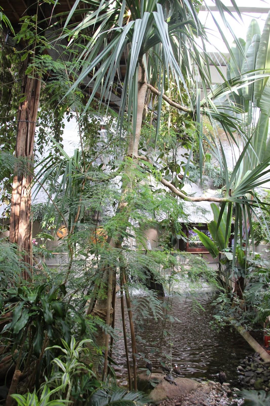 Tropenwelt Biosphäre Potsdam