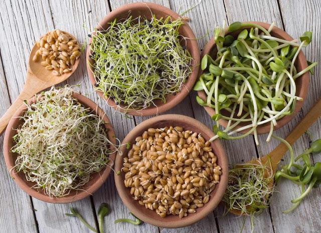 Raw food o comida viva es una dieta muy antigua que promueve el consumo de alimentos en su estado natural. Ya que los alimentos cuando se someten a temperaturas superiores a 45°C comienzan a perder sus vitaminas y enzimas. Se basa principalmente en frutas, verduras, hortalizas, algas, nueces, semillas, brotes o germinados y todos los productos derivados directamente de estos ingredientes tal como aceites de frutos secos, etc. Se utilizan procesos naturales tales como la germinación de granos y semillas, fermentación, deshidratación, conservas y otros procesos donde la estructura molecular del alimento no se destruye, preservando y activando el nutriente óptimo de cada alimento.