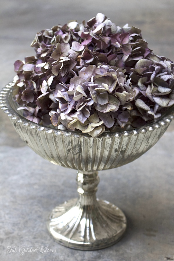 Winter Decorating with Dried Hydrangeas- www.gildedbloom.com