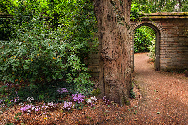 Anglesey Abbey scene in Cambridgeshire by Martyn Ferry Photography