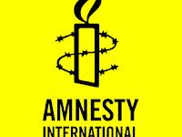 Amnesty International, French to Arabic Freelance Translator