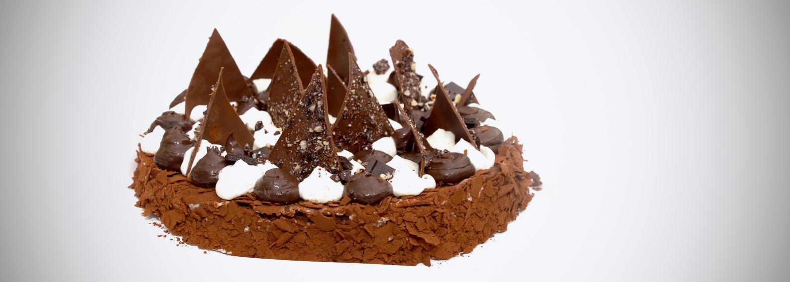 Fantastik 100% cacao de François