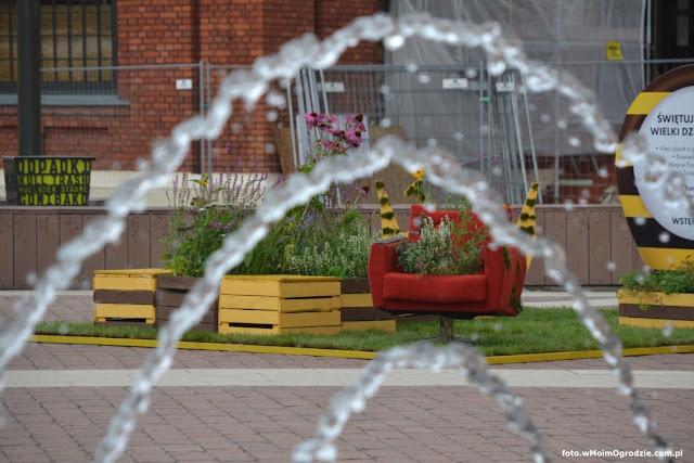 instalacja kwiatowa w przestrzeni miejskiej