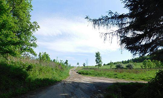 Szlak na Przełęcz Komarnicką.