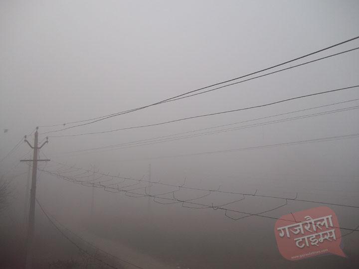 गजरौला-में-कोहरा-तस्वीर