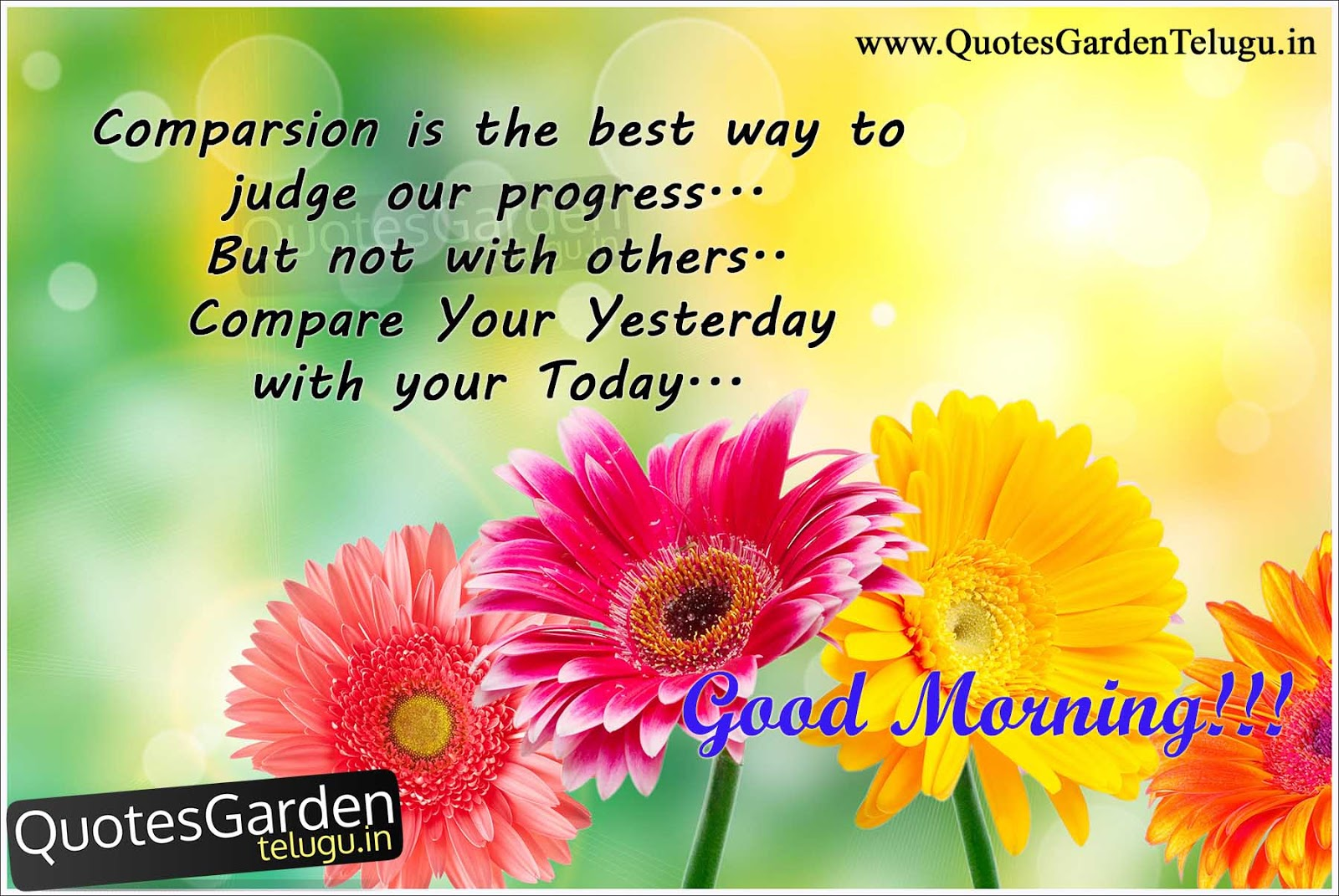 inspirational good morning messages quotes quotes garden