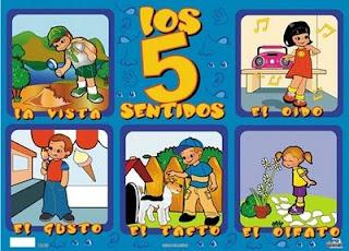 http://www.mundoprimaria.com/juegos/conocimiento-del-medio/ciencias-naturales/salud-bienestar/1-2-primaria/308-juego-sentidos/index.php