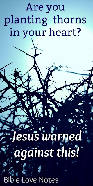 "Are you choking on the ""thorns of life""? Jesus offers an important warning"