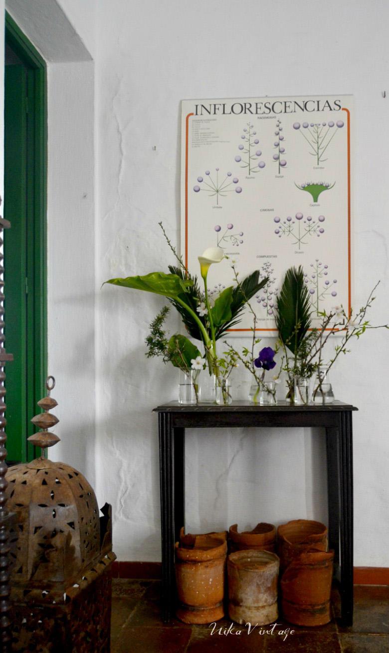 Los útiles de laboratorio de cristal no solo sirven para trabajar, pueden ser ideales para decorar y hacer diversos arreglos florales y veremos como