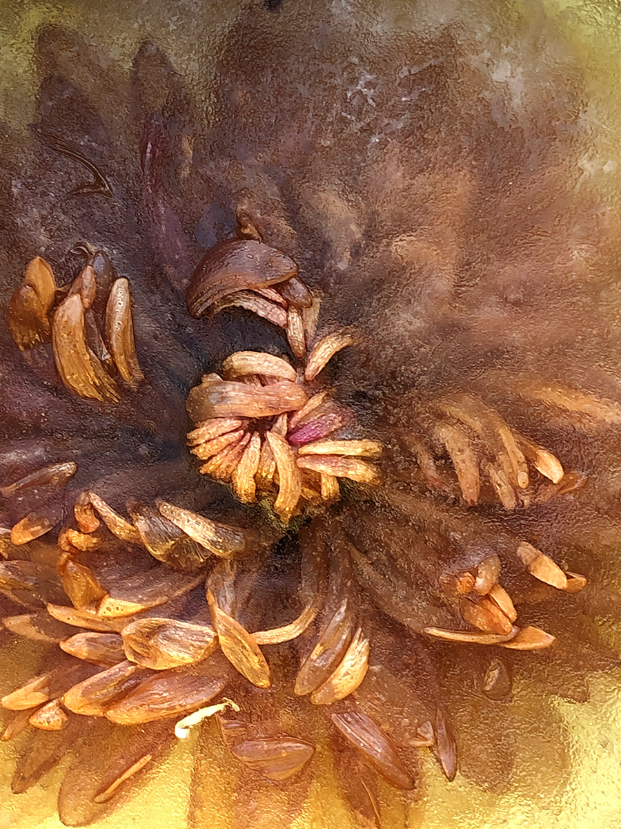 Kathleen Clemons Photography: Frozen Flowers