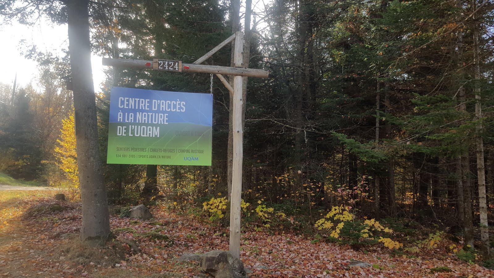 Les Montagnes Au Quebec Montagne Grise Le Sommet La Tete Blanche