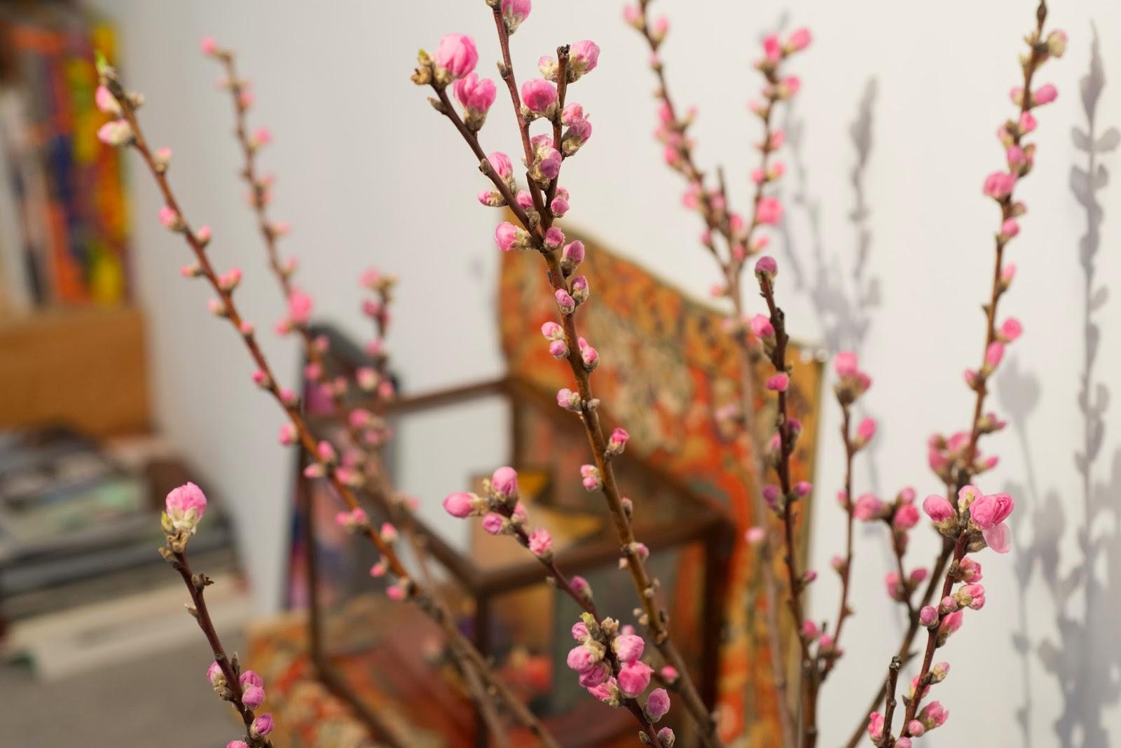 店内の桃の木
