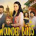 """Telemundo PR adquiere el drama turco """"Wounded Birds"""", la nueva telenovela de la creadora de Elif"""