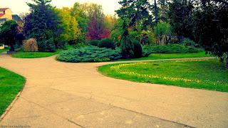 FOTO: Parcul Botanic din Timisoara