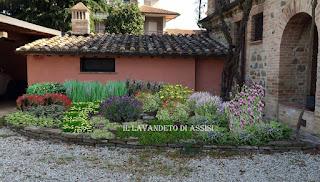 Progetti Piccoli Giardini E Aiuole Online