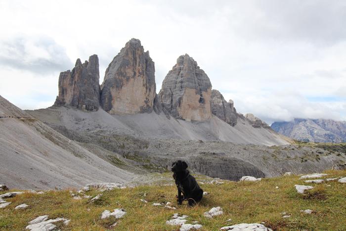 Wandern mit Hund in Südtirol, Drei Zinnen