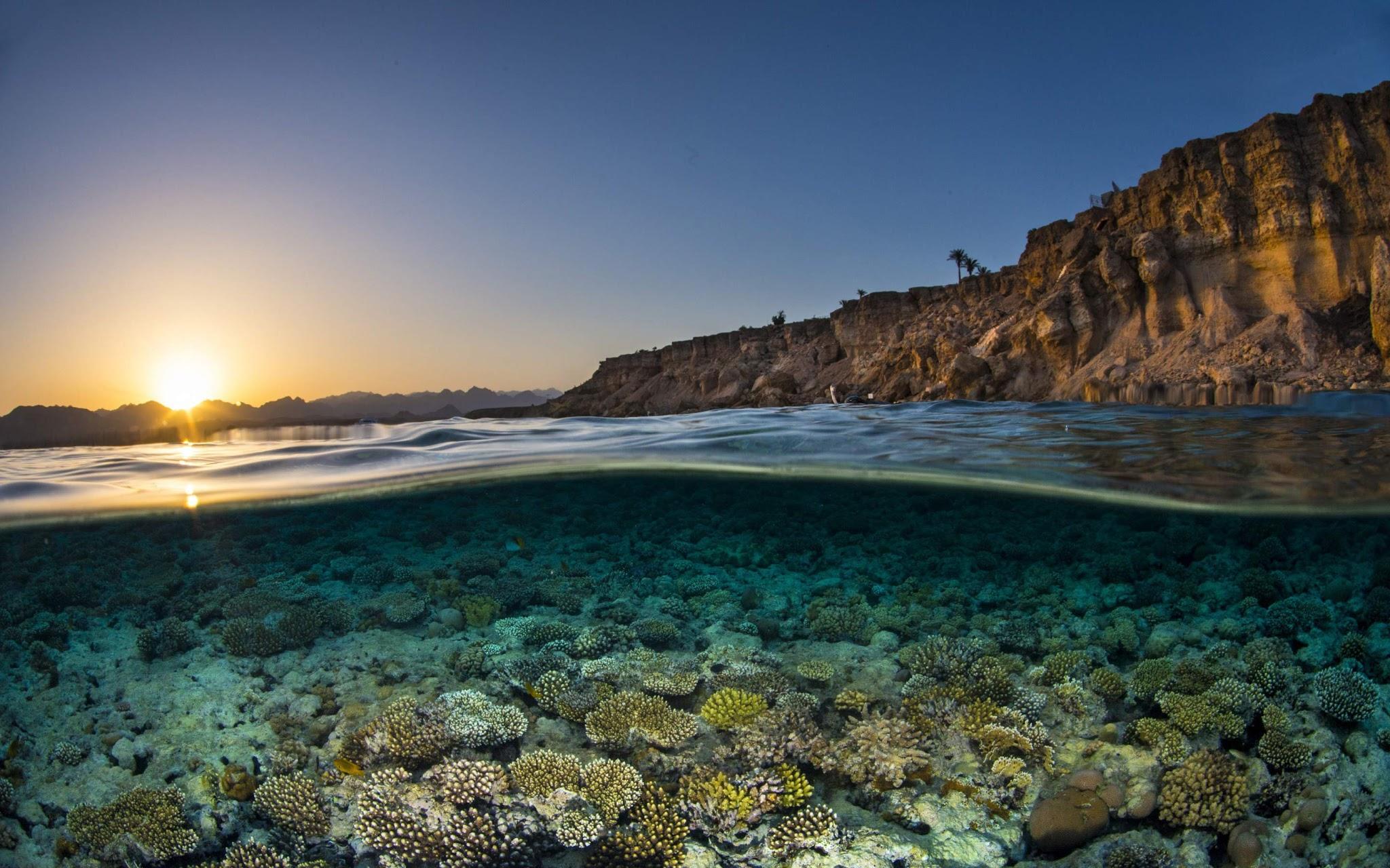Lindo Cenário Subaquático