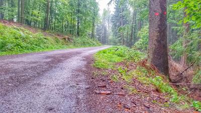 21. Drei Talsperren Marathon 2016 Eibenstock Erzgebirge Gerstenberg