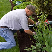 Organic Mulch Helps Build Healthy Soil