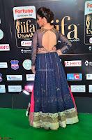 Raai Laxmi in Beautiful Backless Designer Anarkali Gown at IIFA Utsavam Awards 2017  Day 2  Exclusive 09.JPG