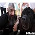 Ένα ρεπορτάζ που αξίζει να διαβαστεί! Πώς ένας σκύλος μας κάνει καλύτερους ανθρώπους...