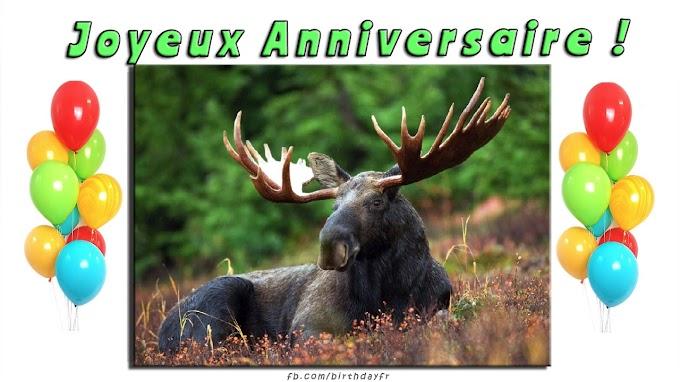 Cerf illustré, carte de voeux d'anniversaire