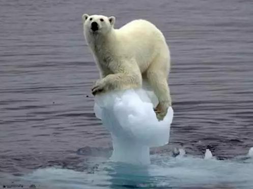 Trump reconoce que el cambio climático no es un 'engaño'