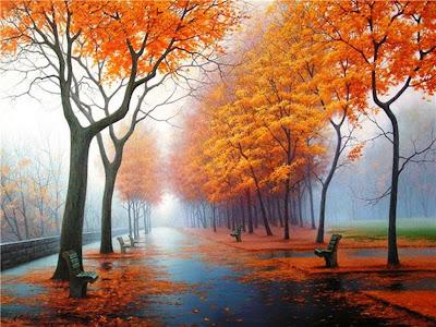 hojas-sobre-el-suelo-del-paseo-tras-la-lluvia-en-otoño