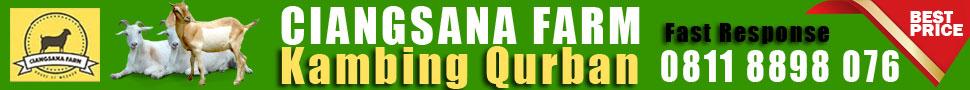 Ciangsana Farm Kambing Qurban