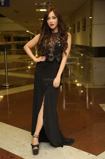 Angela Krislinzki in Transparent Black Gown at Rogue Movie Teaser Launch 1st March 2017 040.JPG