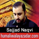 http://www.humaliwalayazadar.com/2016/09/sajjad-naqvi-nohay-2017.html
