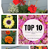 Top Ten Flowers for Summer Color