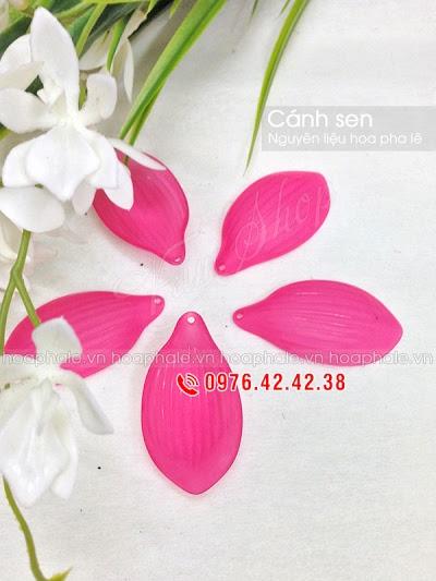 Nguyen lieu hoa pha le o Nghia Do