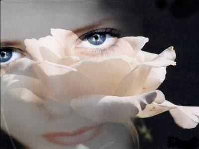 merveilles-poèmes-damour