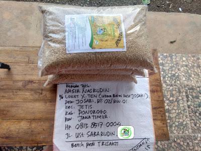 Benih pesanan NASIR N Ponorogo, Jatim.   (Sebelum Packing)