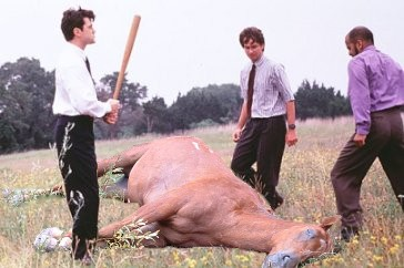 beating_dead_horse.jpeg