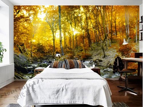 metsä tapetti tapetti metsä syksy metsä tapetti makuuhuoneen koivu runkojen auringonlasku luonto Valokuvatapetti