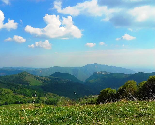 Green landscape on Monte Baldo, at Ferrara headtrail, in May