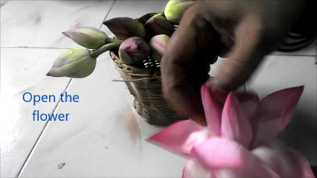 lotus-flower-garland-craft-1ag.png