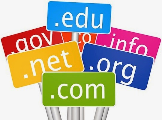 4 Reasons Why One Web Domain is Better for Beginner Bloggers