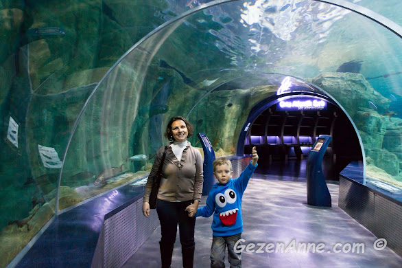 İstanbul Akvaryum'daki sualtı tünelinden oğlumla geçerken