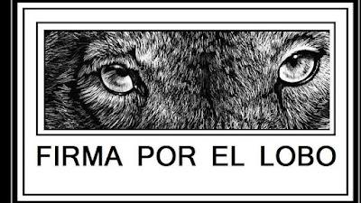 https://www.change.org/p/sac-asturias-org-no-a-la-caza-de-45-ejemplares-de-lobo-ib%C3%A9rico-en-asturias