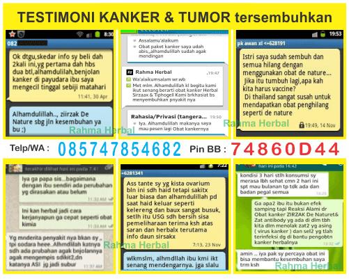 testi obat kanker, testi obat tumor, testi obat kelenjar getah bening