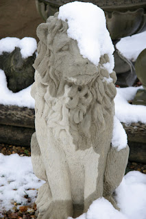 Snow Lion, feeling fed up