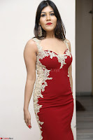 Rachana Smit in Red Deep neck Sleeveless Gown at Idem Deyyam music launch ~ Celebrities Exclusive Galleries 079.JPG