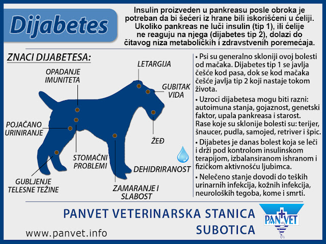 Dijabetes je jedan od vodećih faktora nastanka katarakte