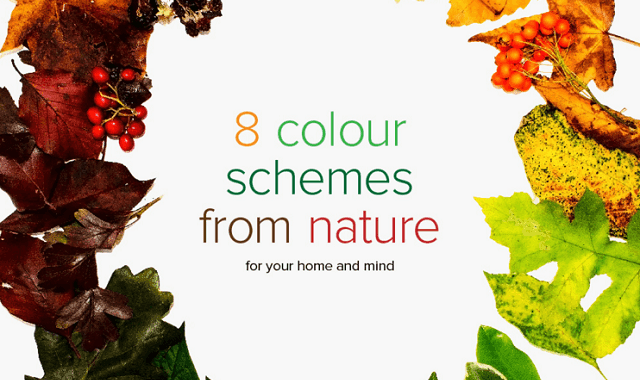 8 Colour Schemes From Nature For Your Home and Mind