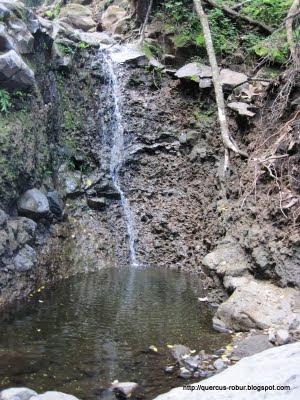 Cerro Viejo - Fosa